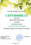 Черняк_1